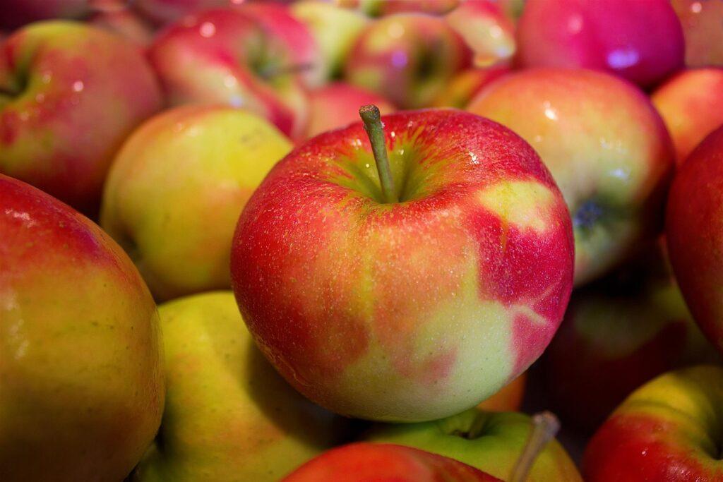 owoce do pracy - dostawy