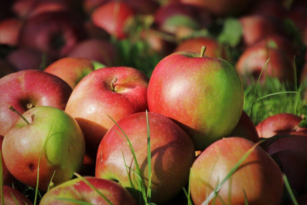 owoce w pracy - jabłka